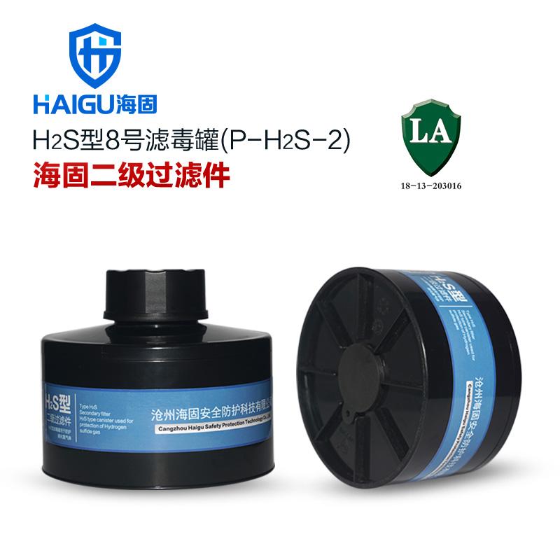HG-ABS/P-H2S-2号滤毒罐 硫化氢 氨气二级滤毒罐 硫化氢防毒专用