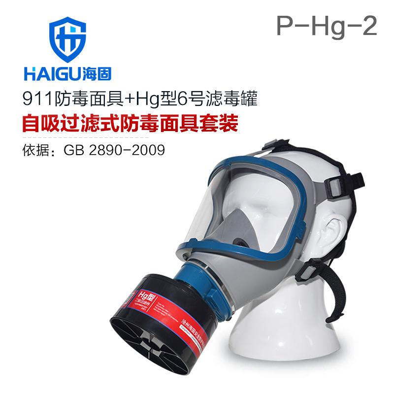 海固911全面罩+HG-ABS/P-Hg-2滤毒罐  水银防护专用防毒面具